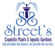 Streets Exquisite Plants & Aquatic Gardens Inc.