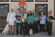 Avalon Veterinary Hospital