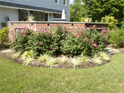 Blue Tree Landscaping, Inc.