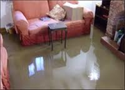 ServicePro Water Damage