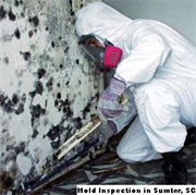 Mold Inspection in Sumter, SC