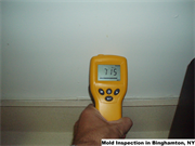 Mold Inspection in Binghamton, NY