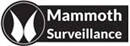 Mammoth Surveillance Camera Systems