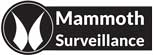Mammoth Security Inc. New Britain