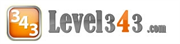 Level343 International SEO and Marketing Company