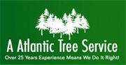 A Atlantic Tree Service
