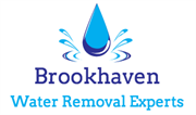Brookhaven Water Removal Experts