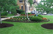 Pro Lawn Care Colleyville