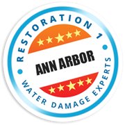 Restoration 1 of Ann Arbor