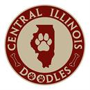 Central Illinois Doodles